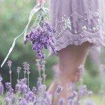 Новинки и новости здоровой красоты: VII-2015