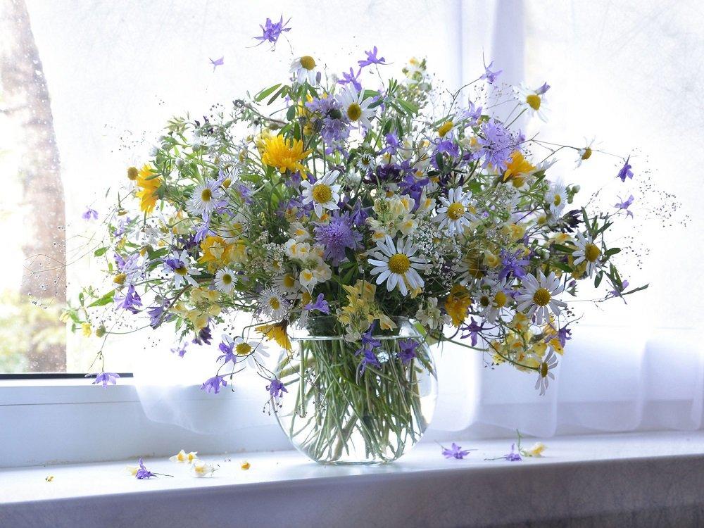 flowers main