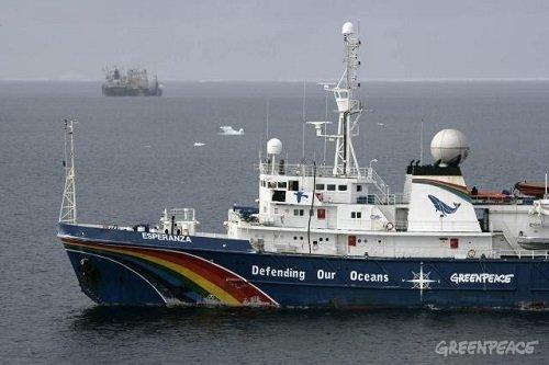 greenpeace_ship